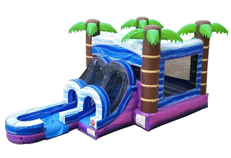 funtimeInflatablesNC-Kids-Tropical-WetDry-Combo-–-Bounce-House-Rental